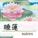 chaicon_suiren