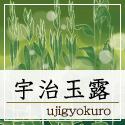 chaicon_ujigyokuro